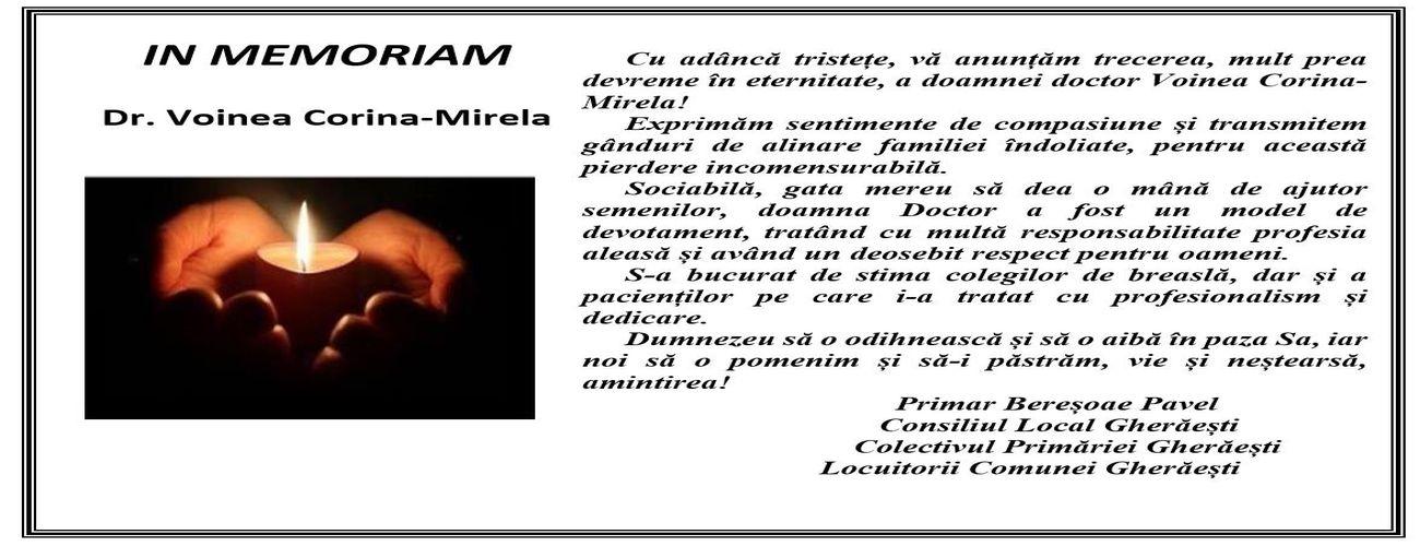 In_Memoriam_Dr_Voinea1300_500
